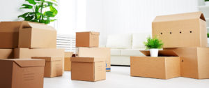 Movers and packers Indore Bhopal, Home Shifting, Car Transport Bike Transport, Household relocation service